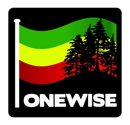 OneWIse_Logos_Color